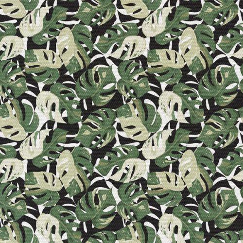 Zielono-Czarna Monstera