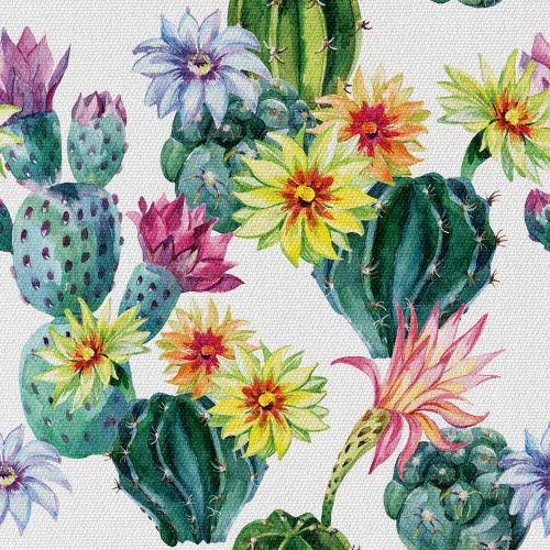 Kaktus z Kwiatem