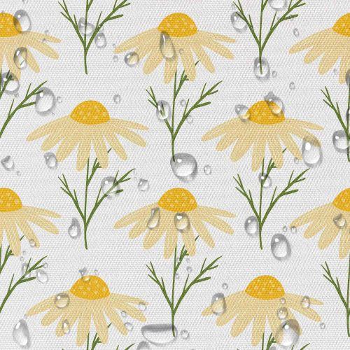 yellow-cute-daisy-flowers