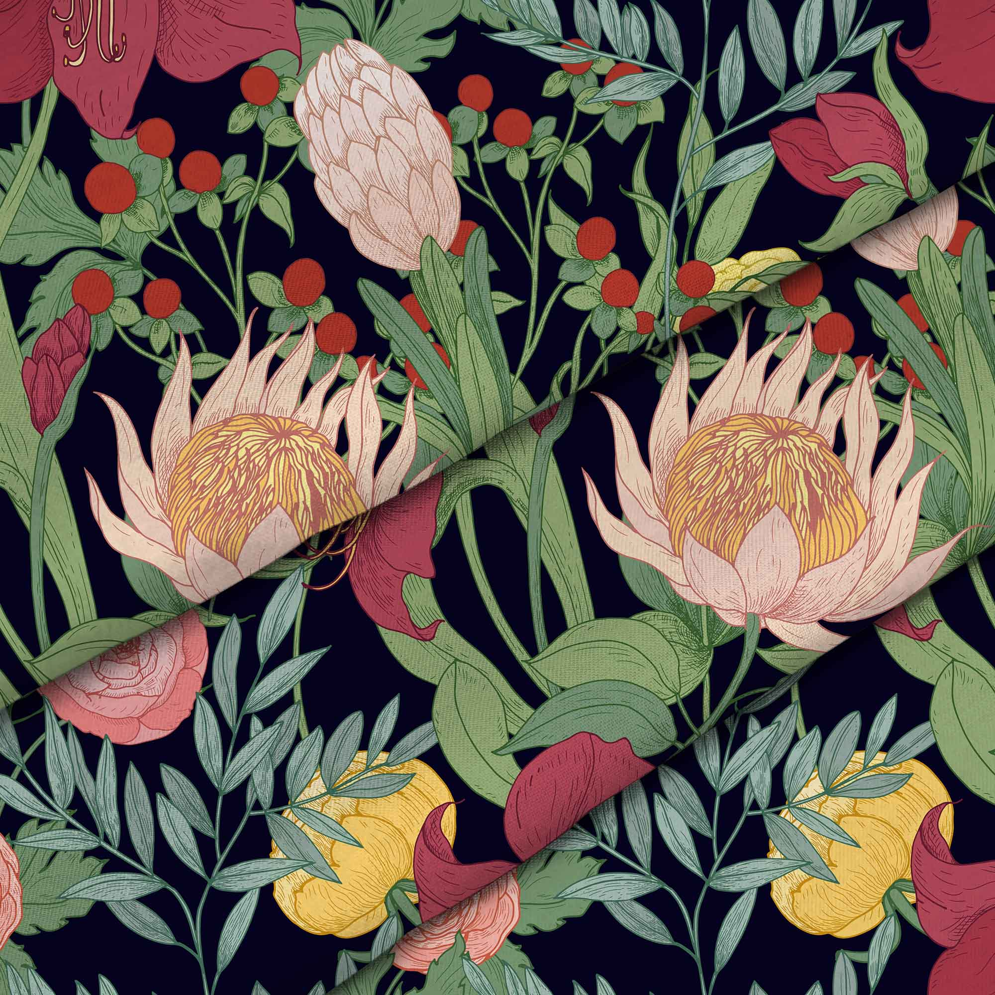 Protea Blooming Flowers